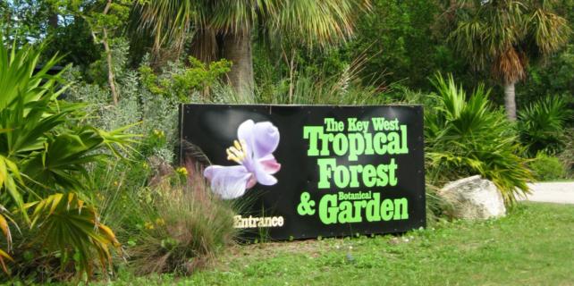 Key West Art Garden - Key West Attractions Association